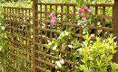 Trellis Panels Nottingham | Trellis Fencing Panels Nottingham